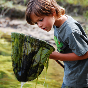 Boy looking at algae in his fishing net